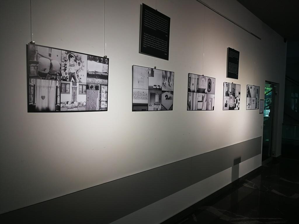 Galerija-FDV-julij-2018