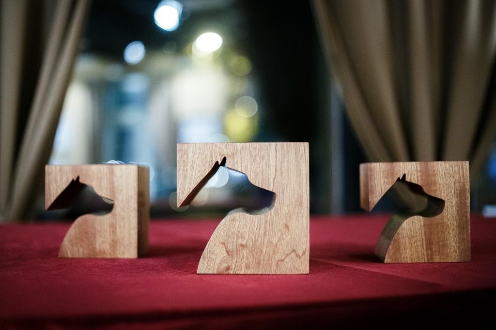 novinarji_nagrade